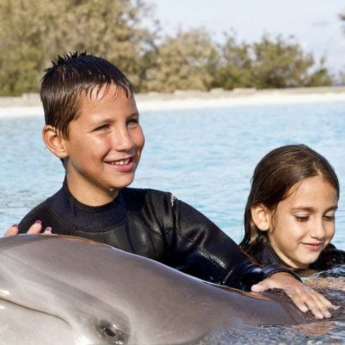 Children with dolphins