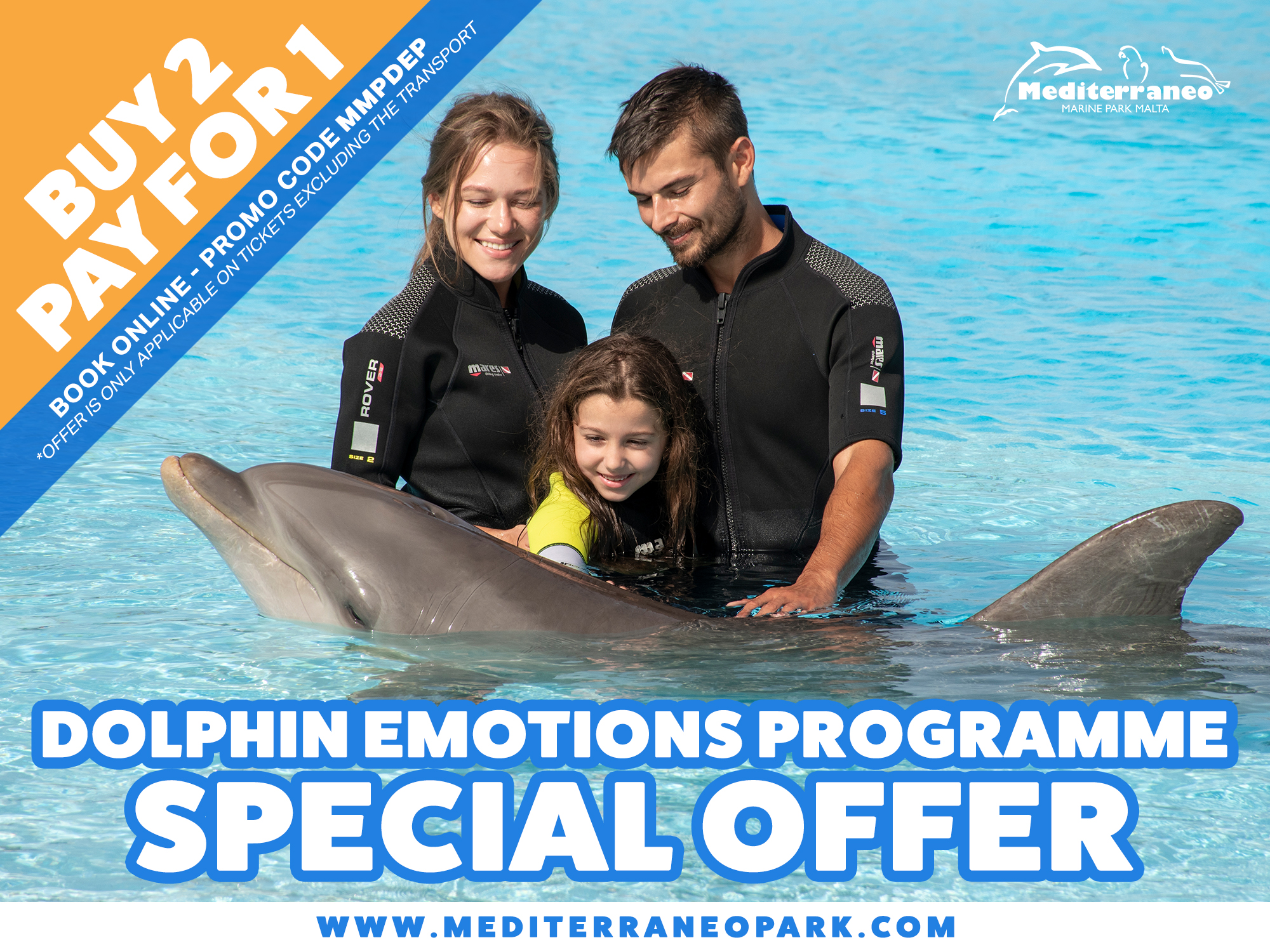 Swim with the Dolphins Malta