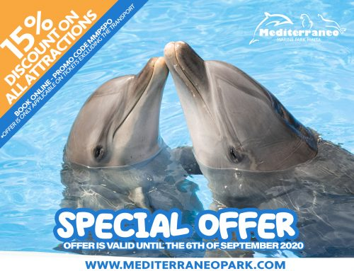 Special Offer – 15% Discount On All Attractions